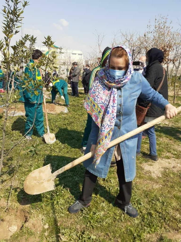 مدیر عامل جمعیت امام علی (ع ) درختی را با امید روز های بهتر در روز درخت کاری کاشتند.